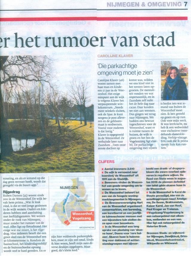 gelderlander-010217-2